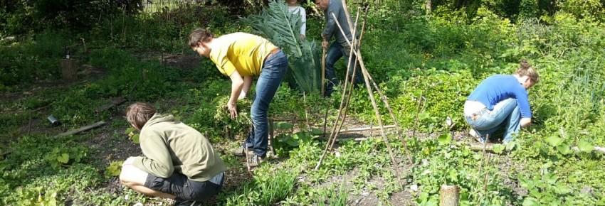 tuinierwerkgroep